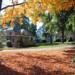 Sexton House thumbnail