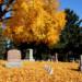 Evergreen Cemetery thumbnail
