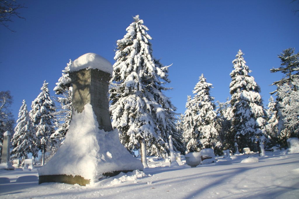 Hoard Monument In Winter